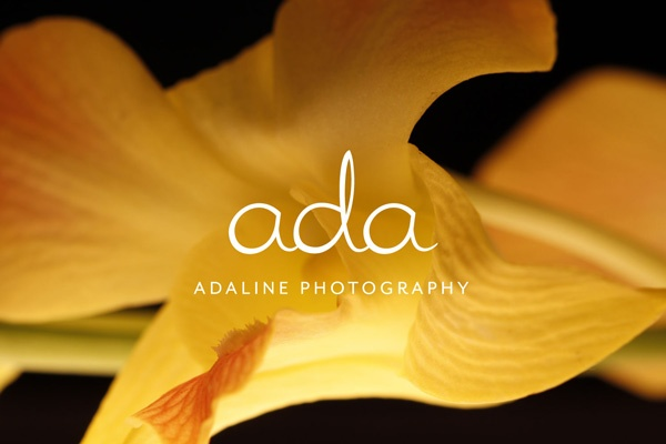 ada-00-flower